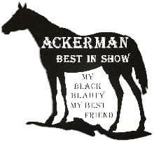 Horse 1 Pet Memorial in Imperial Black PM128BK