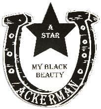 Horseshoe and Star Pet Memorial in Imperial Black PM124BK